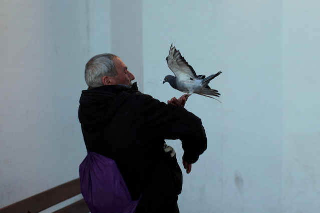 A man holds his pigeon after a priest blessed it outside San Anton Church in the neighborhood of Churriana, in Malaga, Spain January 17, 2017. (Photo by Jon Nazca/Reuters)