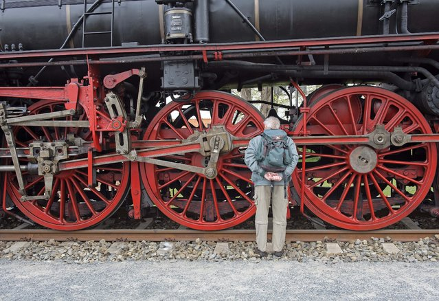 A visitor  inspects the wheels of the steam locomotive during the Dresden Steam Locomotive Festival, the biggest steam engine spectacle in Germany, in the maintenance depot of the railway museum  in Dresden, eastern Germany, Saturday, April 18, 2015. (Photo by Jens Meyer/AP Photo)