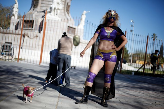 """German wrestler and women's rights activist """"Diosa del Rhin"""" (Goddess of the Rhin) poses for a photograph with a Chihuahua dog during an event to create awareness about gender equality in Ciudad Juarez, Mexico, March 13, 2016. (Photo by Jose Luis Gonzalez/Reuters)"""