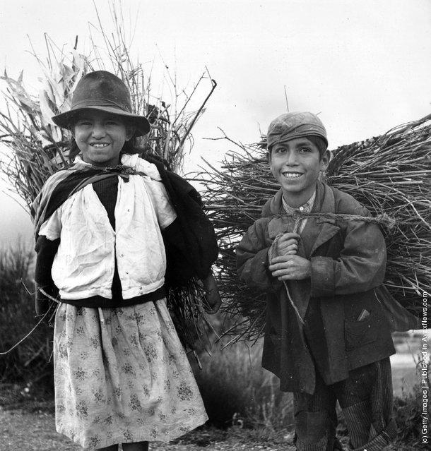 Huancayo children carrying firewood in Peru, 1955