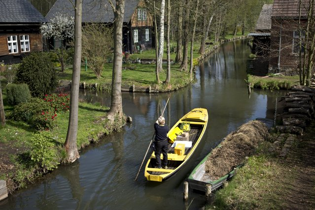 Deutsche Post DHL postwoman Andrea Bunar punts to deliver post using a traditional boat in the Spreewald village of Lehede, Germany in this April 11, 2014 file photo. (Photo by Axel Schmidt/Reuters)