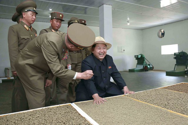North Korean leader Kim Jong Un gives field guidance at the 810 army unit's Salmon farms in this undated photo released by North Korea's Korean Central News Agency (KCNA) in Pyongyang. (Photo by Reuters/KCNA)