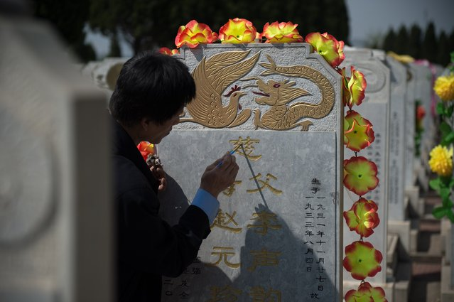 A man adds fresh golden paint on the inscription of the grave of a relative ahead of the annual Qingming festival, or Tomb Sweeping Day, at a cemetery in Beijing on April 2, 2017. During Qingming, Chinese traditionally tend the graves of their departed loved ones and often burn paper money, model houses, cars, mobile phones and other goods as offerings to honour them and keep them comfortable in the afterlife. (Photo by Nicolas Asfouri/AFP Photo)