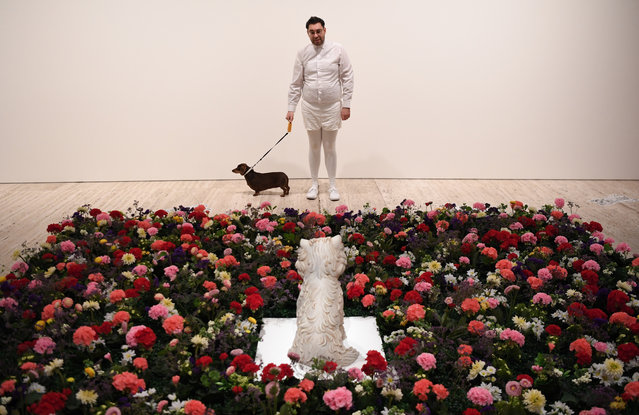 "Artist David Capra and his sausage dog, Teena, looking at the exhibit ""Puppy"" by Jeff Koons during a media preview for Making Art Public: 50 years of Kaldor Public Art Projects at Art Gallery Of NSW on September 06, 2019 in Sydney, Australia. (Photo by James D. Morgan/Getty Images)"