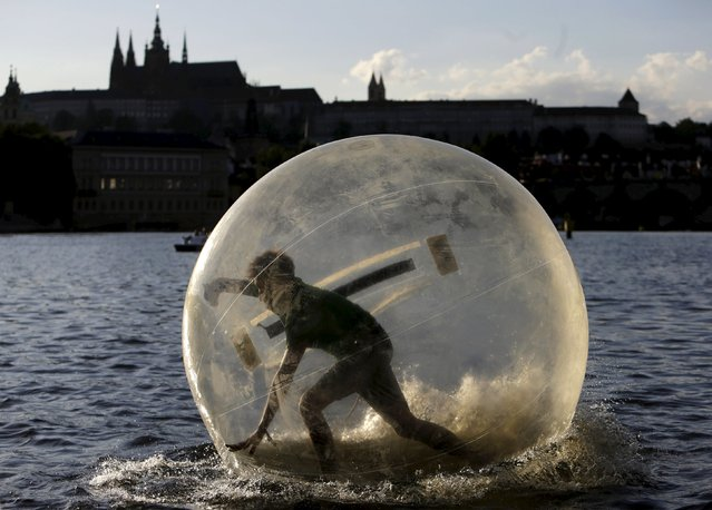 A man plays inside a giant plastic ball, called Zorb on the Vltava river as temperatures hovered over 34 degrees Celsius (93 degrees Fahrenheit) in Prague, Czech Republic, July 21, 2015. (Photo by David W. Cerny/Reuters)