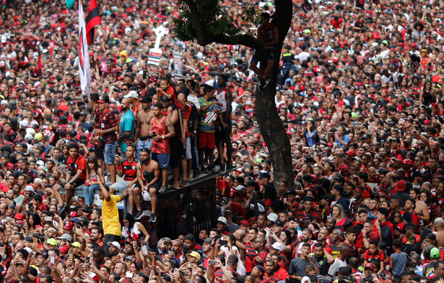 Flamengo fans cheer their team during a parade to mark the victory against Argentina's River Plate in the final of Copa Libertadores in Rio de Janeiro, Brazil on November 24, 2019. Tens of thousands of supporters wearing their team's black-and-red jerseys poured into the streets of the city's historic centre to welcome Flamengo players. (Photo by Adriano Machado/Reuters)