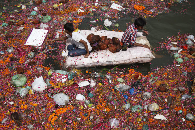 Indian children sit on a makeshift raft as they search for reusable items among offerings thrown by devotees in river Sabarmati at the end of Dashama festival in Ahmadabad, India, Monday, August 24, 2015. After worshiping idols of goddess Dashama for ten days in their homes, devotees immerse the idols in water bodies  along with other offerings at the end of the festival. (Photo by Ajit Solanki/AP Photo)