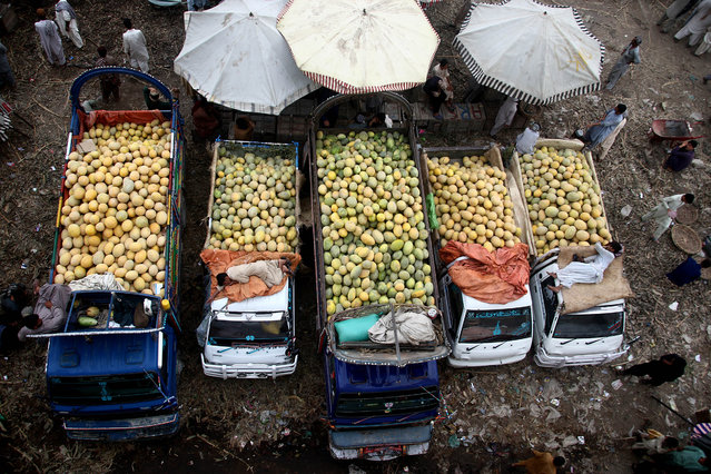 Fruit sellers sell fruit at a fruit market in Karachi, Pakistan, 26 May 2017. (Photo by Shahzaib Akber/EPA)