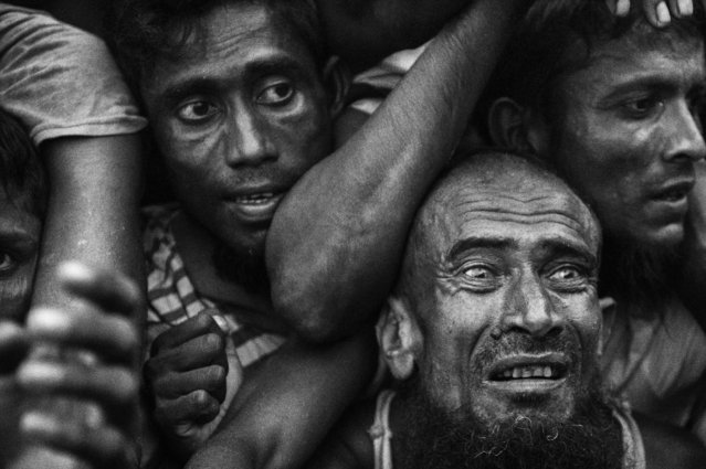 Rohingya refugees desperate for aid crowd as food is distributed by a local NGO near the Balukali refugee camp on September 20, 2017 in Cox's Bazar, Bangladesh. (Photo by Kevin Frayer/Getty Images)