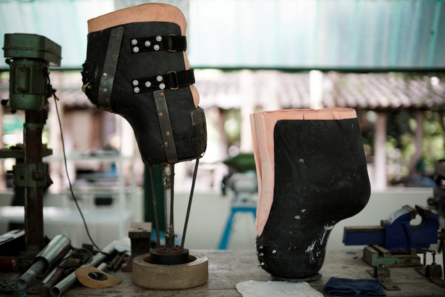 Prosthetic legs for elephants that were injured by a landmine, are seen on a table at the Friends of the Asian Elephant Foundation in Lampang, Thailand, June 29, 2016. (Photo by Athit Perawongmetha/Reuters)