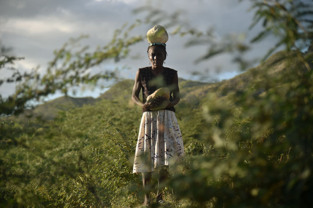 Immaculee Cajuste walks with a stone on her head after collecting it to build the ground of her new house, in the community of Terre Noire, in the mountains of Cabaret, near Port- au- Prince, on December 2, 2017. These houses are built by the NGO Techo, with the help of 70 Haitian volunteers and the benefited families, who collect sand and stones to build with cement the base of their new houses. (Photo by Hector Retamal/AFP Photo)