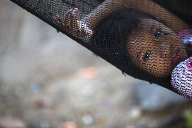 Soe, the eight-year-old daughter of a fisherman from Myanmar, rests in a hammock outside her family home in Ban Nam Khem December 13, 2014. (Photo by Damir Sagolj/Reuters)