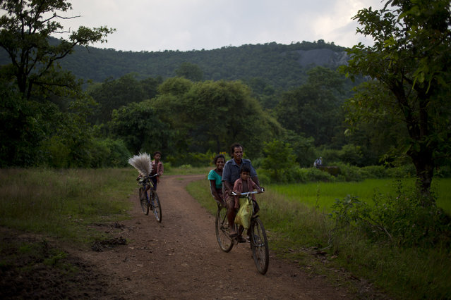 In this September 11, 2014 photo, a tribal family cycles back to their village as the Roro hills stand in the background in Roro, India. (Photo by Saurabh Das/AP Photo)