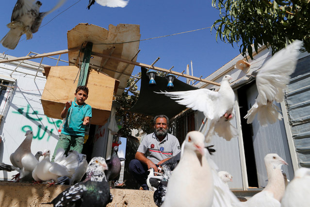 A Syrian refugee man and his son feed pigeons in Zaatari refugee camp near the border with Syria, in Mafraq, Jordan October 14, 2016. (Photo by Ammar Awad/Reuters)