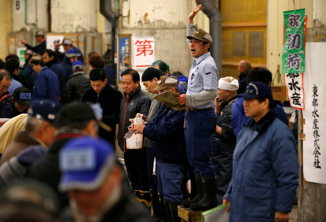 Auctioneers raise their hands as they start the New Year's auction of the frozen tuna while wholesalers check the quality of frozen tuna displayed at the Tsukiji fish market in Tokyo, Japan, January 5, 2017. (Photo by Issei Kato/Reuters)