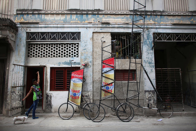 Lionel Espino, 18, assistant of Felix Guirola (not pictured), stretches beside Guirola's homemade bikes with advertising banners, in Havana, Cuba, July 20, 2016. (Photo by Alexandre Meneghini/Reuters)