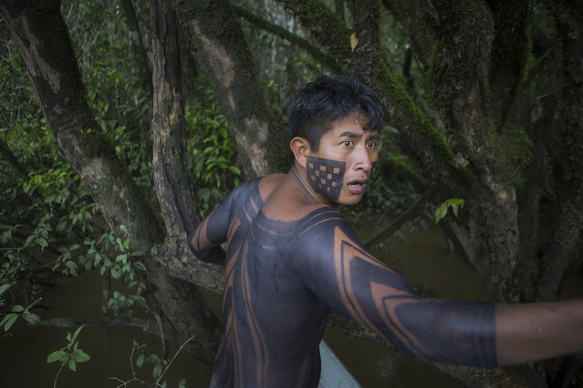 Mukuka, a Xikrin leader, signals to the driver as they navigate a boat through the flooded jungle. (Taylor Weidman)