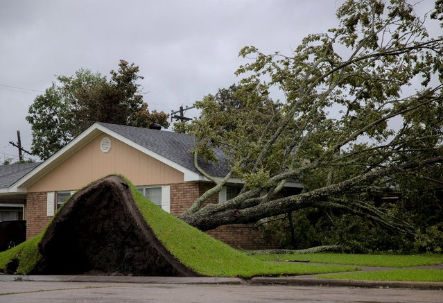 An uprooted tree lays on a house as Hurricane Ida hits Morgan City, Louisiana, the United States, on August 29, 2021. Dangerous high-end category 4 Hurricane Ida on Sunday made landfall with maximum sustained winds of 150 miles (about 240 km) per hour just west of Grand Isle, southern U.S. state Louisiana, bringing life-threatening storm surge, catastrophic winds and dangerous rainfall flooding. (Photo by Nick Wagner/Xinhua News Agency)
