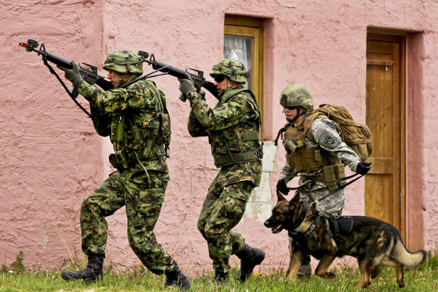 Lithuanian soldiers provide a security escort for U.S. Army Sgt. Kara Yost, right, a military police dog handler with the 131st Military Working Dog Detachment, 615th Military Police Company, May 17, 2014, during the urban assault training part of Combined Resolve II at the Joint Multinational Readiness Center in Hohenfels, Germany. (Photo by Capt. John Farmer/U.S. Army)