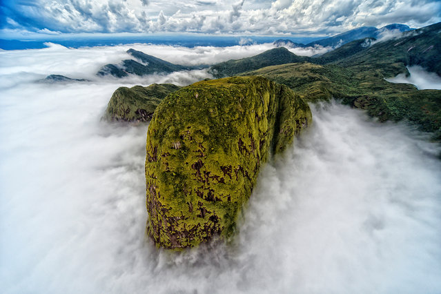 """Landscape second place: Denis Ferreira Netto, Brazil. """"In a helicopter flight through the sea mountain range, I came across this white cloud cover, which resulted in this magnificent image that resembles the head of a dinosaur"""", the photographer said. (Photo by Denis Ferreira Netto/TNC Photo Contest 2021)"""