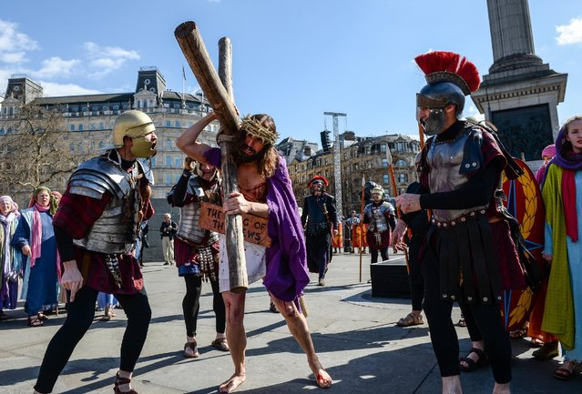 "Actor James Burke-Dunsmore carries the crucifix whilst playing Jesus during The Wintershall's ""The Passion of Jesus"" in front of crowds on Good Friday at Trafalgar Square on March 25, 2016 in London, England. (Photo by Chris Ratcliffe/Getty Images)"
