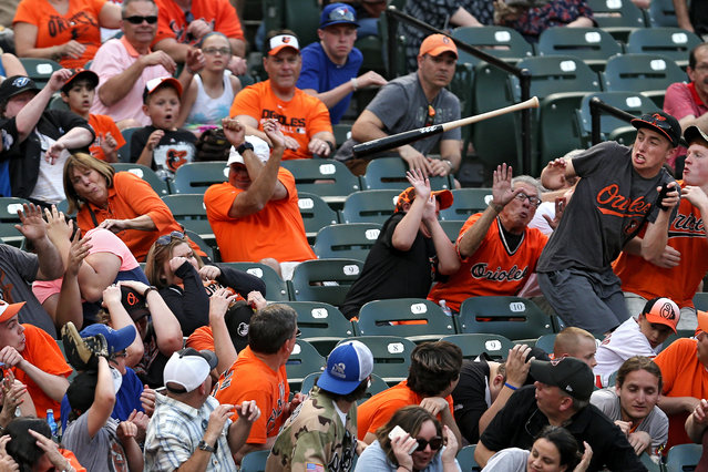 Fans attempt to dodge the loose bat of Josh Donaldson #20 of the Toronto Blue Jays in the third inning against the Baltimore Orioles at Oriole Park at Camden Yards on May 12, 2015 in Baltimore, Maryland. (Photo by Patrick Smith/Getty Images)