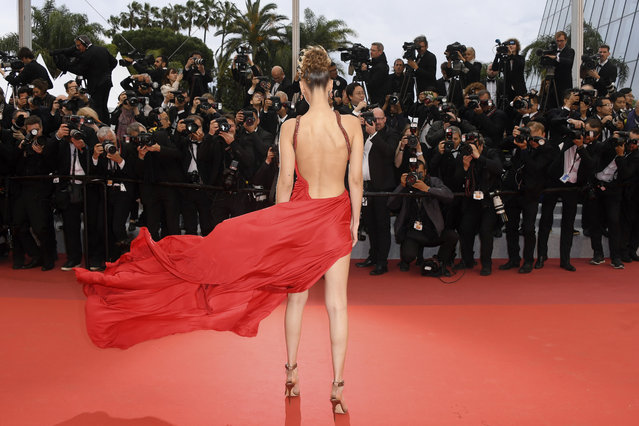 "Model Bella Hadid poses for photographers at the photo call for the film ""Pain and Glory"" at the 72nd international film festival, Cannes, southern France, Friday, May 17, 2019. (Photo by Arthur Mola/Invision/AP Photo)"