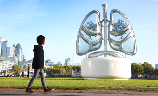 "A 16ft pair of ""LUNGS"" has been unveiled in London, England on September 19, 2019. As part of a wider campaign on air pollution, E.ON has built LUNGS to make the invisible visible and raise awareness of the issue. Linked to the live levels of air pollution in London. (Photo by PinPep/Rex Features/Shutterstock)"