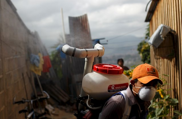 A health worker carries out fumigation to help control the spread of Chikungunya and dengue fever, which are caused by viruses carried by mosquitoes, at a neighbourhood in Tegucigalpa, Honduras, July 21, 2015. The Honduran Ministry of Health is conducting fumigations in some areas of the capital to clean up and control an outbreak of chikungunya, which has reported more than 50,000 cases since beginning of the year, local media reported. (Photo by Jorge Cabrera/Reuters)
