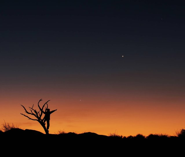 Three Planets in Conjunction by Lóránd Fényes (Hungary). The staggering colours of the sunset and flora of the African savannah afford a unique background for the planetary alignment of Jupiter, Venus and Mercury in June 2013. The golden hues of the sunrise, the three planets appeared as if they were strung on an invisible thread, and the bare tree and the human figure interwoven both point to one direction: Jupiter. (Photo by Lóránd Fényes)