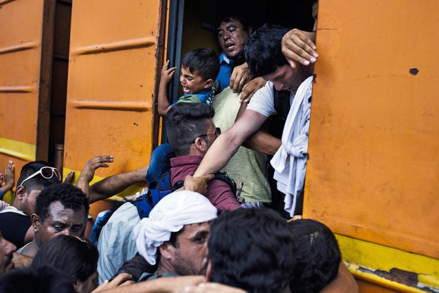 Migrants try to climb on a train heading to the border with Serbia at the train station of Gevgelija, on the Macedonian-Greek border on August 5, 2015. Many migrants try to cross Macedonia and Serbia to enter the European Union via Hungary, a country that will finish building its anti-migrant fence on its southern border with Serbia by August 31, ahead of a previous November deadline. (Photo by Dimitar Dilkoff/AFP Photo)