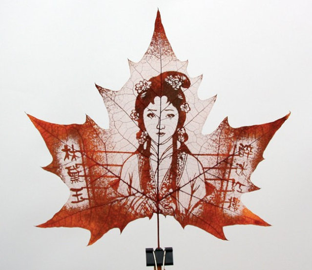 Leaf Art by Lorenzo Duran