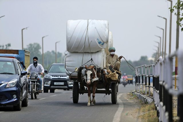 A man wearing a mask rides a horse cart delivering goods in Jammu, India, Tuesday, June 23, 2020. (Photo by Channi Anand/AP Photo)