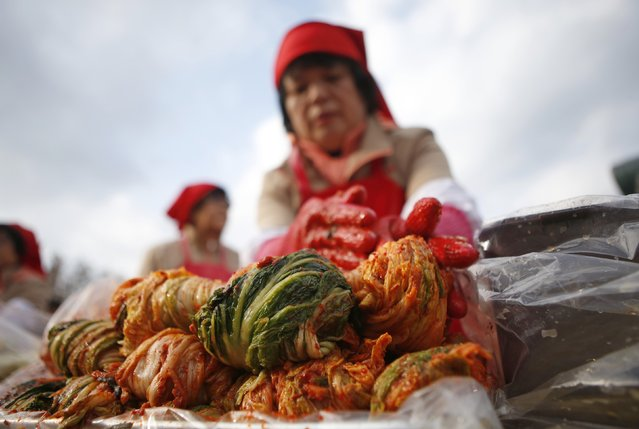 A woman makes traditional Korean side dish kimchi, or fermented cabbage, during the 2014 Seoul Kimchi Making and Sharing Festival at Seoul City Hall Plaza in Seoul November 14, 2014. More than 2,300 volunteers made 250 tonnes of kimchi on Friday to give away to needy people during the winter season. (Photo by Kim Hong-Ji/Reuters)