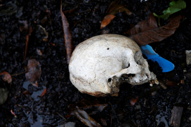 A human skull is seen at a cemetery after Hurricane Matthew hit Jeremie, Haiti, October 17, 2016. (Photo by Carlos Garcia Rawlins/Reuters)