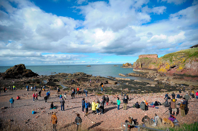 Competitors take part in the European Stone Stacking Championships 2018 in Dunbar, Scotland, on April 22, 2018. (Photo by Andy Buchanan/AFP Photo)