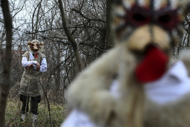 Children wearing masks walk along a road during Bele Poklade carnival celebrations in the village of Lozovik, some 100 km (62 miles) from the capital Belgrade, February 22, 2015. (Photo by Djordje Kojadinovic/Reuters)