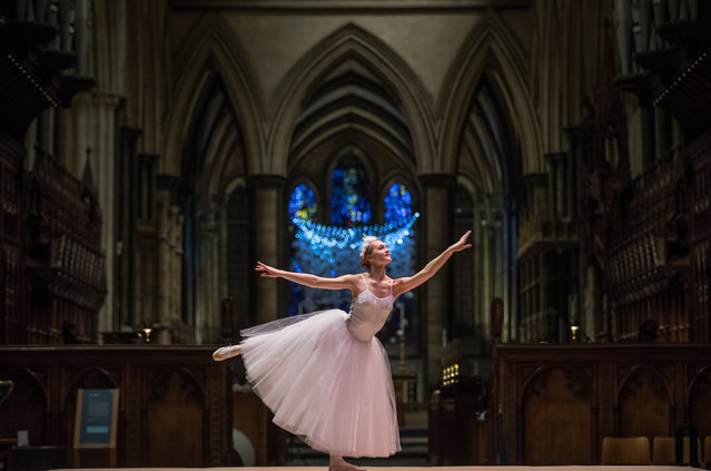 Ballerina Emily Harper dances during the dress rehearsal of A Winter's Trail, a new promenade drama being held at Salisbury Cathedral on December 15, 2016 in Salisbury, England. The performance by the Hoodwink Theatre Company, which runs this weekend, is described as a playful journey through the Cathedral after dark, following a trail of winter memories in a magical story told in laughter, lights, singing and dancing, that weaves together childhood and old age. (Photo by Matt Cardy/Getty Images)