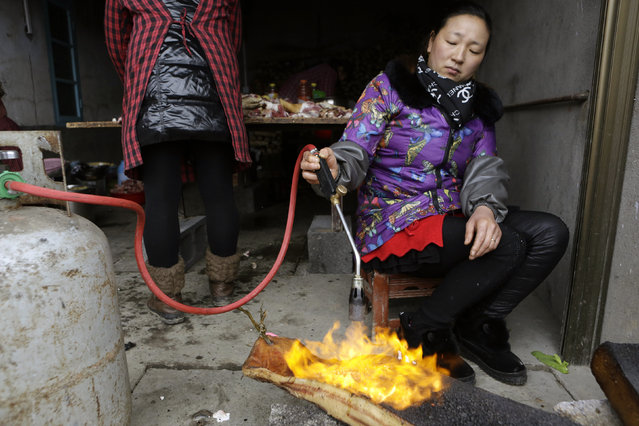 A local cook burns pork skin as she prepares a traditional ethnic Tujia wedding feast for about 2000 guests during celebrations to mark the Lunar New Year, in Ziqiu town, Changyang county of China's Hubei province, February 14, 2016. (Photo by Jason Lee/Reuters)
