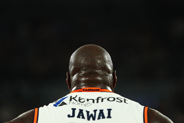 Nathan Jawai of the Taipans is seen from behind during the round 18 NBL match between Melbourne United and the Cairns Taipans at Hisense Arena on February 14, 2019 in Melbourne, Australia. (Photo by Michael Dodge/Getty Images)