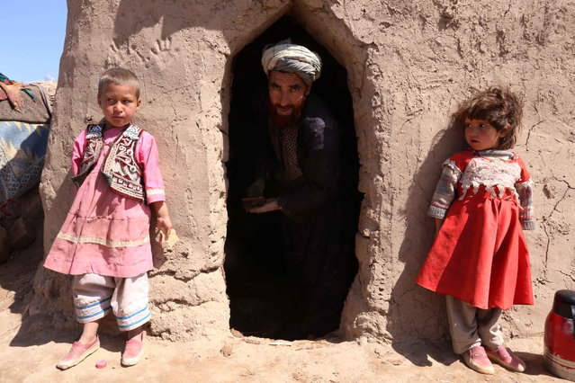 Afghan people pose for a photograph near their temporary shelter at an internally displaced person's (IDP) camp on the outskirts of Herat, Afghanistan, April 20, 2015. According to UN Refugee Agency (UNHCR) figures, the number of internally displaced Afghani people was 683,000 by mid-2014, estimating they will amount to 900,000 by the end of 2015. (Photo by Jalil Rezayee/EPA)