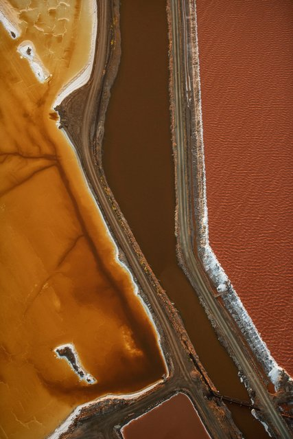 """Landscape third place: Jassen Todorov, US. """"If you have flown into San Francisco international airport, you may have seen these colourful salt ponds over the bay"""", Todorov said. """"I have photographed them numerous times, as the colours and patterns constantly change thanks to microorganisms and salinity. This aerial image was taken while flying my plane"""". (Photo by Jassen Todorov/TNC Photo Contest 2021)"""
