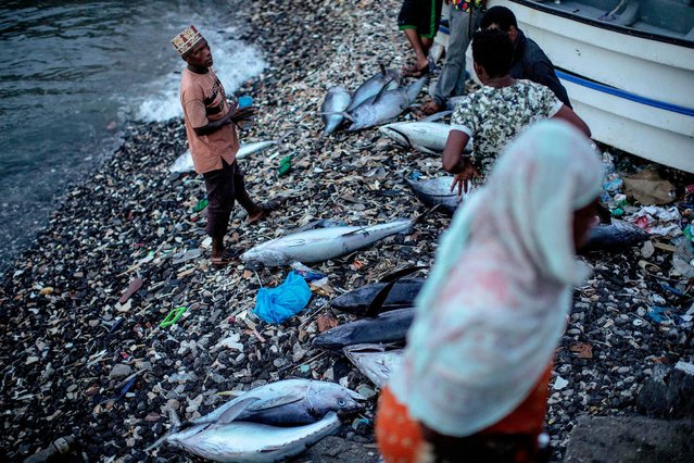 """Comoran fishermen check on their catch at dusk on March 25, 2019 in Moroni, Comoros. Police fired teargas and rubber bullets on March 25 to disperse more than 100 opposition supporters as Comoros awaited results of elections President Azali Assoumani is expected to win, AFP journalists said. The main opposition grouping, the Union of the Opposition, alleged that irregularities at several polling stations reported by the electoral commission on March 24 when polling took place, amounted to a """"coup d'etat"""" and called for public """"resistance"""". (Photo by Gianluigi Guercia/AFP Photo)"""