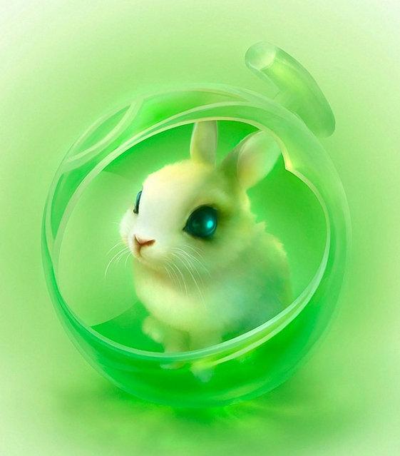 Cute Little Animals By Shuichi Mizoguchi