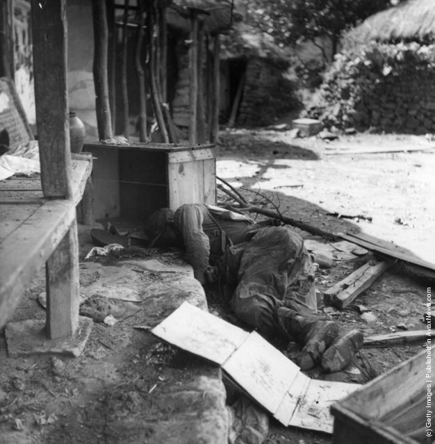 A dead Korean soldier, 1950