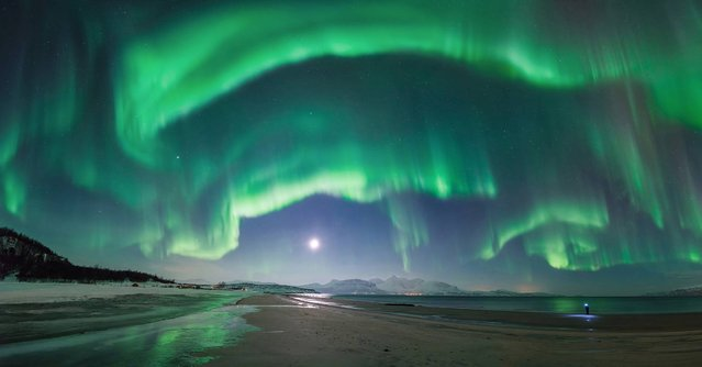 What the...! by Tommy Richardsen (Norway). A flamboyant flare up of the aurora over Steinsvik beach, in Nordreisa, Troms, Norway. It lasted no more than ten minutes from start to finish but it lit up the entire sky and took the photographer by surprise, just as he was about to leave the shoot. The figure on the right is his brother, furiously searching for his lens cap to capture the same phenomena. (Photo by Tommy Richardsen)