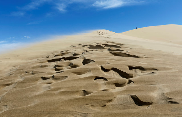 A tourist stands at an edge of the singing sand, the 150-metre-high by three-kilometre-long dune that generates a low-pitched, organ-like rumble in dry weather, in Altyn-Emel national park in Almaty region, Kazakhstan, May 12, 2016. (Photo by Shamil Zhumatov/Reuters)