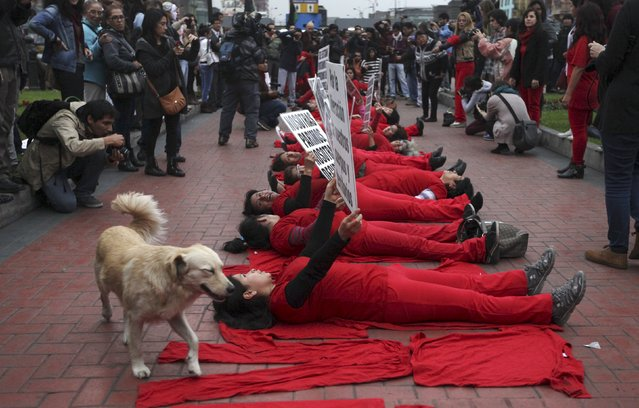 A dog walks next to pro-abortion activists during a protest to support a proposal to change Peruvian abortion laws in down town Lima, August 12, 2015. (Photo by Guadalupe Pardo/Reuters)