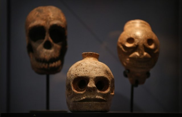 Skulls and skull shaped vessels are displayed at the Death: A Self-portrait exhibition at the Wellcome Collection on November 14, 2012 in London, England. The exhibition showcases 300 works from a unique collection by Richard Harris, a former antique print dealer from Chicago, devoted to the iconography of death. The display highlights art works, historical artifacts, anatomical illustrations and ephemera from around the world and opens on November 15, 2012 until February 24, 2013.  (Photo by Peter Macdiarmid)