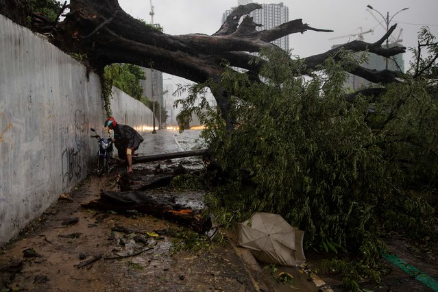 A man carries his motorcycle over a fallen tree following Typhoon Vamco, at a road in Quezon City, Metro Manila, Philippines, November 12, 2020. (Photo by Eloisa Lopez/Reuters)